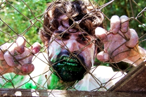 Alexandre Brunoro em Zombio 2_Foto Andye Iore