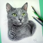 Retrato de Pet